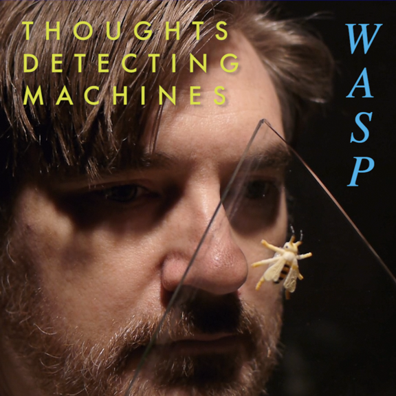 Wasp Cover Art
